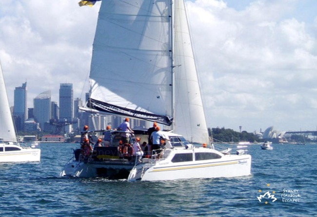 Corporate Sailing & Regattas