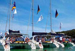 Corporate Catamaran Sailing Regattas