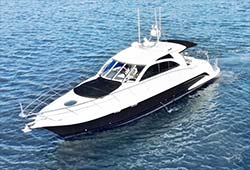 COCO 56' Genesis Sports Yacht Luxury Corporate Charter