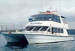 KONDOR 53' Twin Deck Catamaran Boxing Day Charter