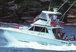REEF MAGIC 43' O'Brien Power Cruiser Boxing Day Charter
