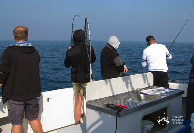 Sea Eagle Fishing Tour