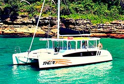 TIGER 3 38' Sailing Catamaran Private Charter