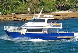 TRUE BLUE 50' Catamaran New Year's Day Charter