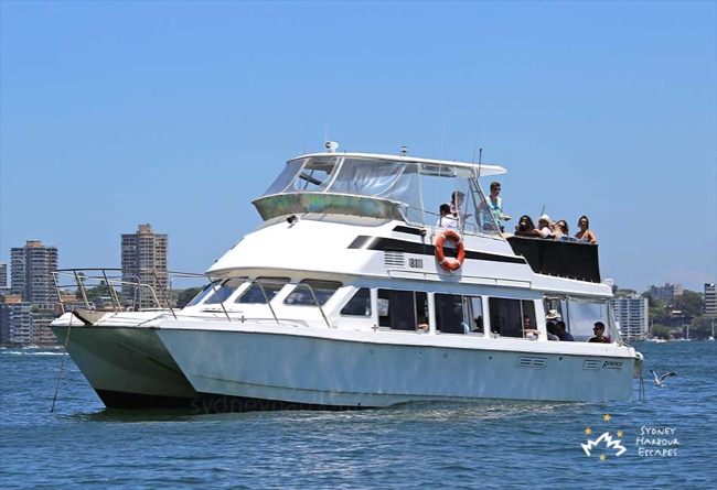 ALI B 40' Power Catamaran Private Australia Day Charter