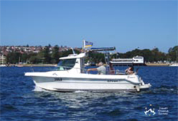 Arvor Rose Bay boat hire