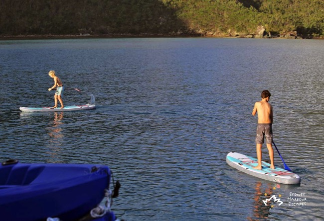 Whitsundays Paddle Boarding 3