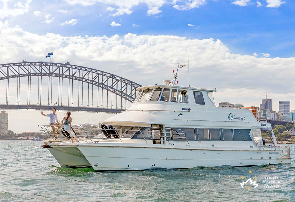 Fleetwing II Cruising Harbour Bridge