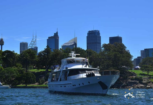 Hiilani Cruising in Sydney