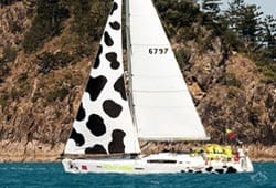 HOLY COW! 52' Beneteau Yacht Australia Day Boat Hire