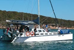 IMAGINE 48' Sailing Catamaran New Year's Day Charter