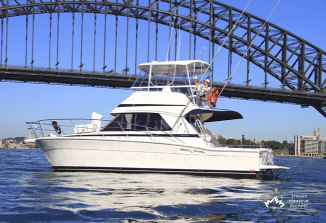 MEDUSA 36' Riviera Flybridge Sydney Private Charter