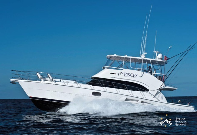PISCES 56' Riviera Open Flybridge Luxury Cruiser Corporate Hire