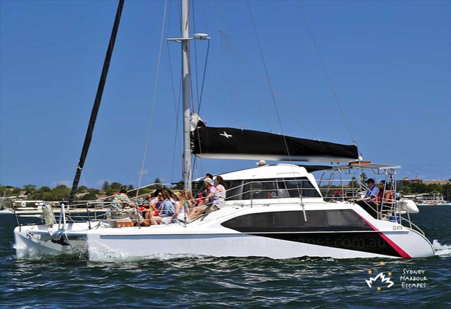 ROCKFISH 2 34' Seawind Catamaran Corporate Charter