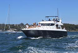 Sunseeker Cruising