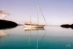Sydney Sundancer in the Morning Whitsundays