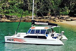 TIGER 2 34' Sailing Catamaran New Year's Day Charter