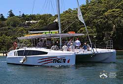 TIGER 4  38' Sailing Catamaran Corporate Charter